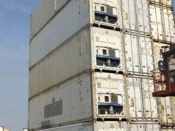 广州周边大量冷冻集装箱租售与价格