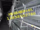现代化蛋鸡上料机 鸡场上料机 价格