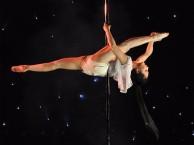 沙坪坝舞蹈培训 爵士热舞钢管肚皮舞绸缎吊环等包教会