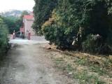 草蓢宅基地出售,空气好,环境清静