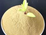 厂家直供高蛋白水产饲料添加剂酿酒酵母
