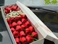 节日鲜花提前预订6.8折 开业花篮 婚车装饰 盆栽