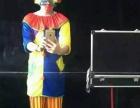 小丑魔术,可免费试场