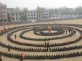 武汉企业户外拓展 军事拓展 少儿户外夏令营拓展等