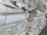 专业加工坯布 优质纯棉双经双纬帆布白坯布 棉坯布厂家直销