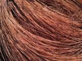 本溪电缆回收废铜回收废铝回收