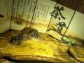 楠木茶桌, 花梨茶桌,鸡翅木根雕茶桌,茶几,现货