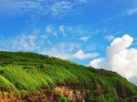 运城到广西北海银滩、涠洲岛休闲两日游
