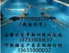 安馨水育早教亲子拓展训练游泳池哪里有