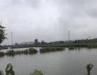 唐山乐亭 景华庄院农家院