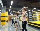 沈阳奥创自由搏击馆散打拳击综合格斗专业的培训基地