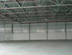 南山大冲单一层钢构1500平米厂房分租