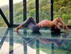 四季晶华周边的舞蹈瑜伽健身房