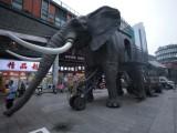 网红双层载人机械大象,会动会叫机械大象,全国出租出售