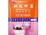 川秀双歧杆菌7菌酸奶发酵剂 七株菌益生菌乳酸菌