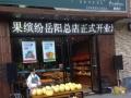果缤纷水果店加盟创业 水果店更有竞争力