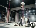 舞蹈成就梦想更成就女性费斯舞蹈一切从改变开始