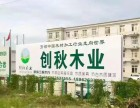 杭州建筑木方种类