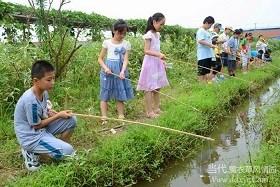 垂钓小龙虾 可以自钓自烧上海振茸粮食种植专业合作社