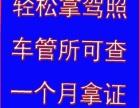 镇江驾校招生,让你考驾照的路上无忧tf