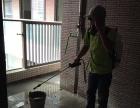 中山【推荐】石岐 横栏除白蚁公司虫害防治中心50年