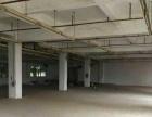 黄圃会展中心 标准厂房分租2楼900平方形象好
