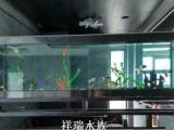 各种观赏鱼批发价格面议