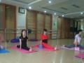 南阳飞扬健身专业瑜伽学习,培训