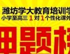 2018年潍坊艺考生文化课一对一辅导就选潍坊学大同程私塾