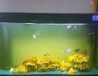 森森鱼缸1.5米