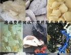 德福塑料回收、专业收塑料、胶类回收、工厂清理