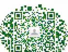 专业网站域名建设开发