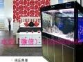 昆明鱼缸送货上门,办公司鱼缸,家庭鱼缸,隔断鱼缸