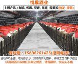 重庆凤香型高粱酒代理-悦展酒业