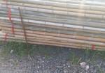 绿化竹竿批发