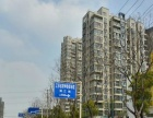 出租滨江明珠城精装两房 交通便利 采光好 拎包即住