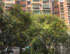 白云艳山红时代新居 3室2厅2卫 139平米时代新居