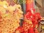 安阳市舞龙舞狮表演团队,专业舞狮表演