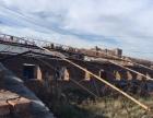 出租佳木斯和平大队5000平米/6.2亩 暖窖