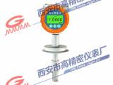 西安高精密仪表厂高精度音叉密度计