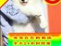 真正的自己实体狗场 专业繁萨摩耶犬 签定协议