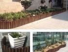 厦门绿化花箱种植葡萄架垂直绿化修剪阳台花园花篮景观设计施工