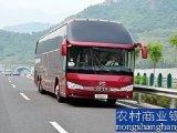 客車大巴車合肥到上海客車乘車時刻表