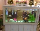 鱼缸上门清洗 鱼缸维修 鱼缸造景 过滤系统升级
