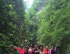 金丝峡、棣花古镇、仙鹅湖二日游