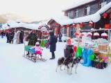 哈尔滨,亚布力 雪乡 长白山自由行包车