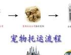 广佛宠物托运 国内国际随机 火车汽车托运