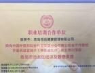 专职医护人员无痛催乳,国家中医药管理局指定培训单位