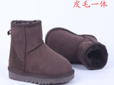 一双起批 5854低筒羊毛一体雪地靴 进