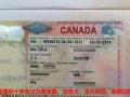 办理加拿大旅游签证申请被拒两次再签